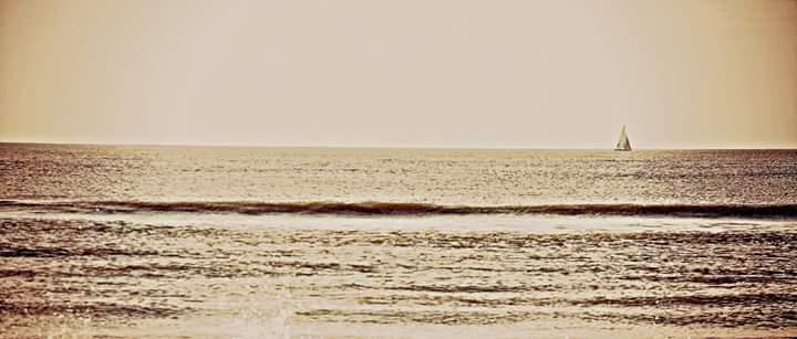 Il mare d'inverno di Daniele 86