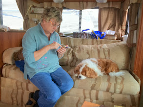 Photo: Alice and Kinkey...in the rig on a rainy morning.