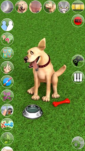 Talking John Dog: Funny Dog for PC