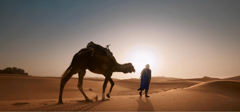 travel, caravan, desert, hijrah meaning