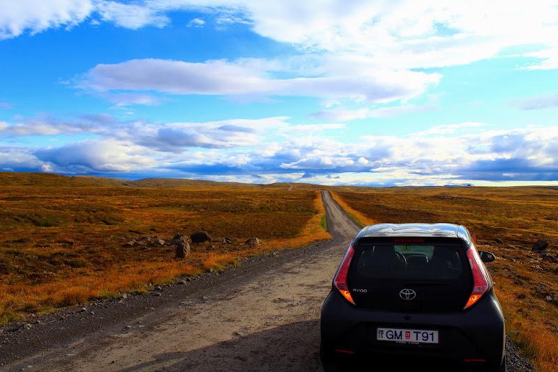 Road to Dettifoss di lukich