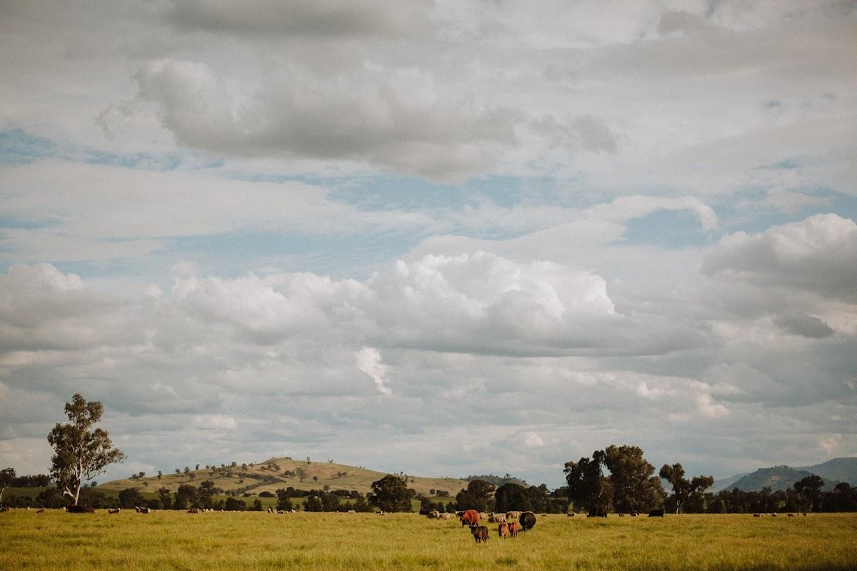 141ha Kilkivan Community Farm