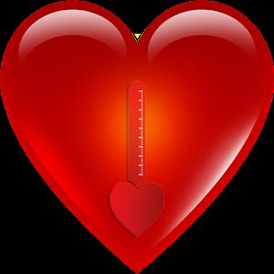 Simple Love Meter