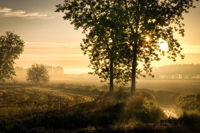 La prima luce del mattino di Sergio Locatelli
