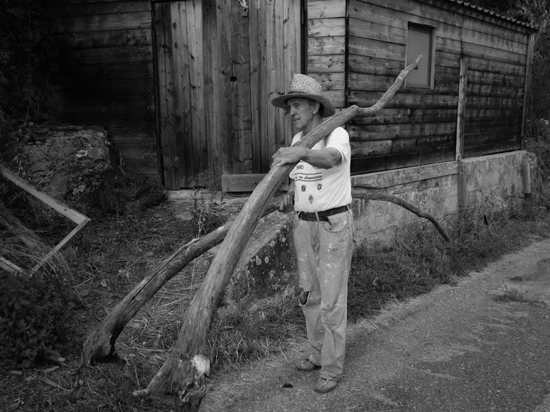 Il duro lavoro del contadino. di claudio_sposetti