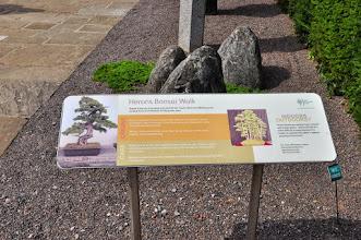 Photo: Herons Bonsai Walk - Kew