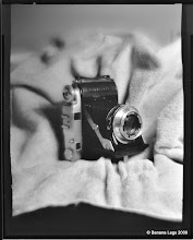 Photo: Balda camera. 1/4 plate Zeca with 4x5 back, pre-flashed paper negative, yellow filter, f/8, 43 sec.