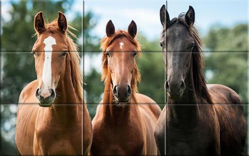 Puzzle - Beautiful Horses 1.24 screenshots 3
