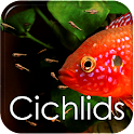 How to Breed Cichlids icon