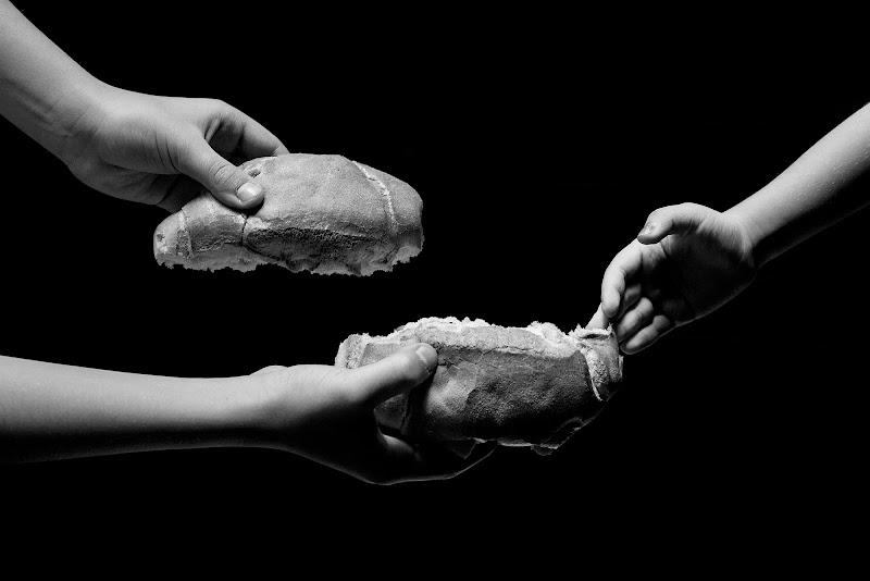 Feed The World di Domenico Cippitelli