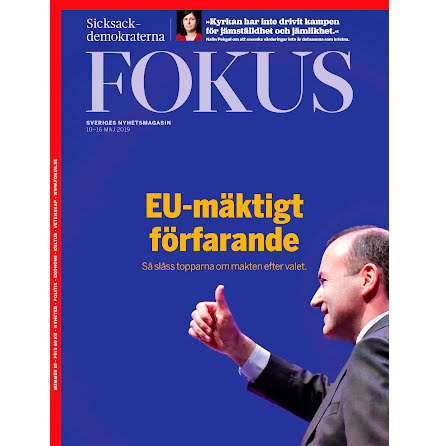 Fokus #19/19