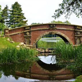 Bridge at Dessau-Worlitzer Garden Realm, Worlitz, Germany by Sheri Fresonke Harper - City,  Street & Park  City Parks ( punting, reflection, worlitz, dessau-worlitzer garden realm, germany, bridge, river,  )