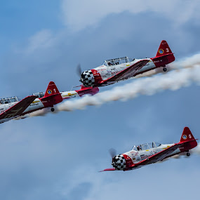 Texans by George Nichols - Transportation Airplanes ( clouds, texans, sky, airplane, aircraft, air, motion, planes, smoke, airshow,  )