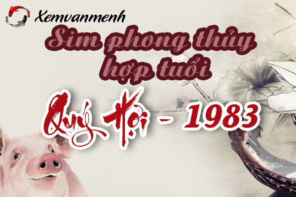 xem-sim-phong-thuy-hop-tuoi-quy-hoi-1983