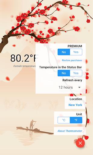 Thermometer Free screenshot 3