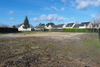 terrain à Saint-Roch (37)
