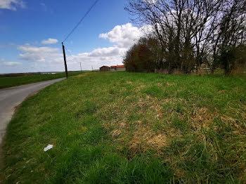 terrain à La Roche-Rigault (86)