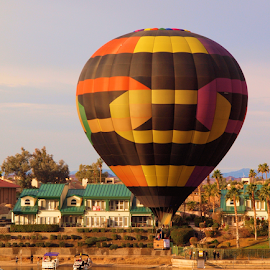 Hot Air Balloon Morning by Becky McGuire - Transportation Other ( havasu, balloon, fly, arizona, mohave, az, water, tvlgoddess, becky mcguire )