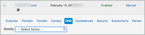 The DNS option under the domain name is selected.