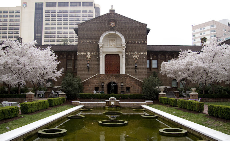 Photo: Everything in full bloom in front of Penn Museum.  — at University of Pennsylvania.