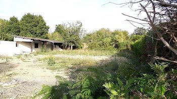 terrain à Longueville (77)