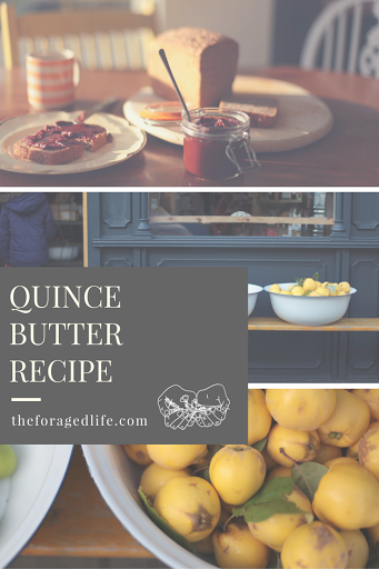 Quince Butter Recipe by The Foraged Life