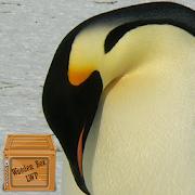 خلفيات لطيف البطريق APK