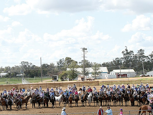The Abbey Dynasty Campdraft Carnival was held in perfect weather at Narrabri Showground. Pictured, some of the 58,000 horses descended from Abbey and their riders assemble for the grand parade on Saturday.