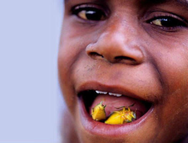 İğrenç Yiyecekler - Böcek