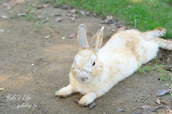TO House兔子庭園餐廳