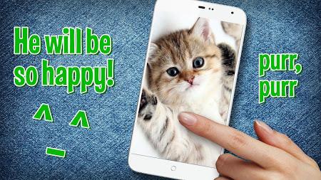 Pat a Kitten 1.0 screenshot 129770