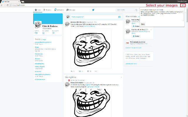 Troll Chrome Images