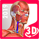 Anatomy Learning - 3D Atlas apk
