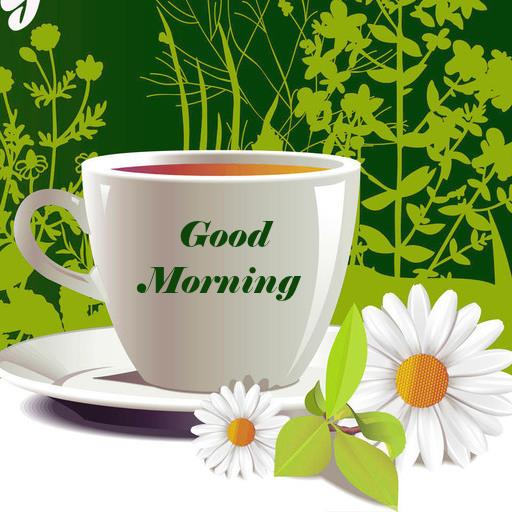 Download Good Morning Wishes WallPapers Google Play