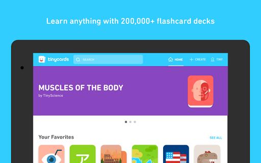 Tinycards by Duolingo: Fun & Free Flashcards screenshot 9
