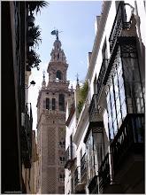 Photo: Calle hacia la Giralda. Sevilla http://www.viajesenfamilia.it