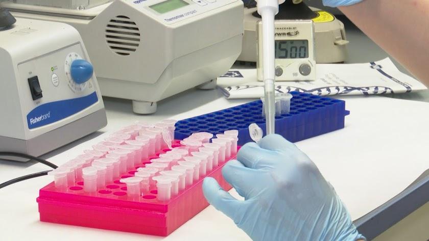 La Universidad de Oxford reanuda los ensayos de su vacuna contra la COVID-19.