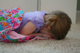 Photo: Emmy, trying to stay warm on the family room floor - she up and fell asleep this way