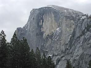 Photo: This photo of Half Dome (SX10 IS) was taken from another meadow that Herb showed us on Day 2 not accessible to cars.  The trees at the top-right give an idea of the size of that.