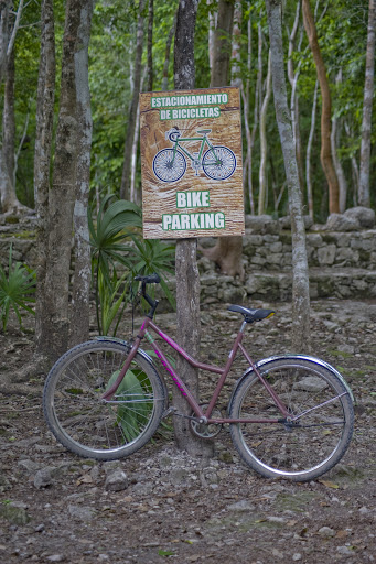 Cruise-Coba4 - Bicycle parking at Cobá. Bikes are available for rent at the entrance.