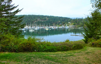 Photo: View along our walk on Orcas Island
