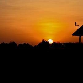 by Simona Susino - Landscapes Sunsets & Sunrises (  )