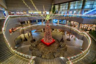 Photo: The Christmas tree and lights at Tokyo Opera City in Shinjuku.