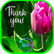 Merci Thanks You Pictures GIF