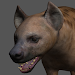 Hyena Pose Tool 3D Icon