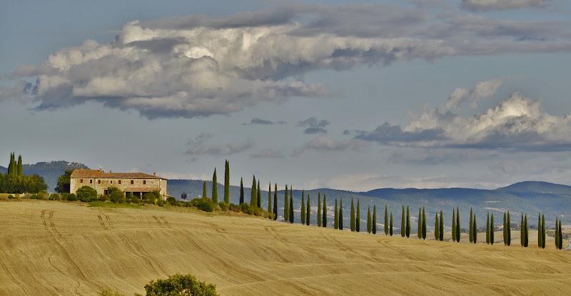 Magnifica Toscana di Tatiana_D