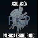 Palencia Kernel Panic