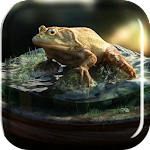Frog Amazing Graphics LiveWP