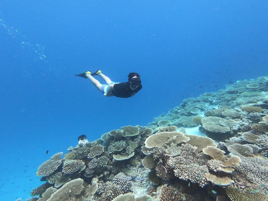 snorkeling maldivas