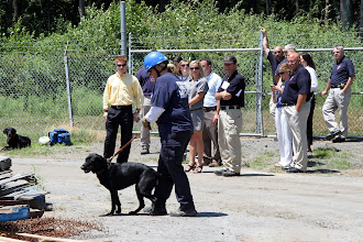 Photo: Canine Search Specialist prepares for a live find demonstration. A live person is hidden inside the rubble pile